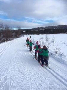Norvege.skidefond