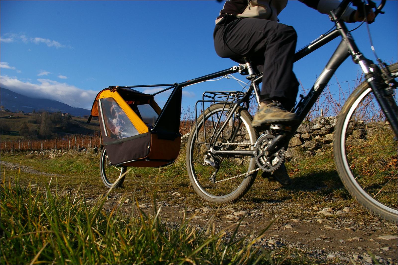 Tout Sur Le Transport Des Enfants Pour Une Longue Randonnée à Vélo