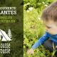 À la découverte des plantes médicinales et comestibles avec Capucine Chartrand